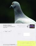 Pigeon Postcard No. 15