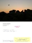 Pigeon Postcard No. 7