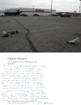 Pigeon Postcard No.11