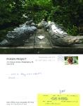 Pigeon Postcard No.13