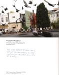 Pigeon Postcard No.4