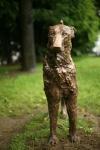 Encounter. Bronze. 2013