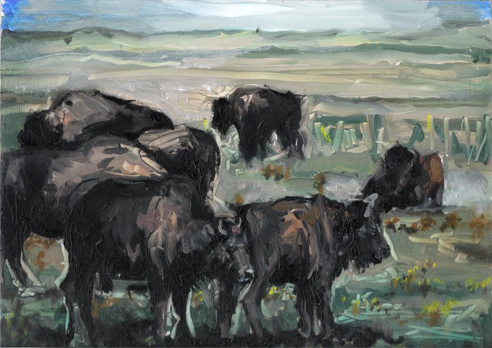 buffaloweb